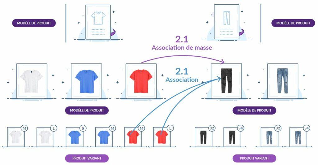 schéma du principe d'association de masse